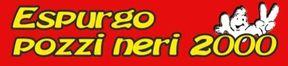 ESPURGO POZZI 2000